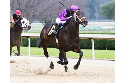 Warrior's Charge wins the Razorback Handicap at Oaklawn Park