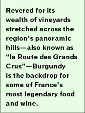 "Revered for its wealth of vineyards stretched across the region's panoramic hills—also known as ""la Route des Grands Crus""—Burgundy is the backdrop for some of France's most legendary food and wine."