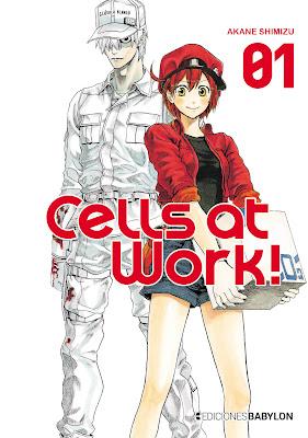 Entrevista a Ed. Babylon / J. Bolado sobre el manga Hataraku Saibo / Cells at Work de Akane Shimizu.