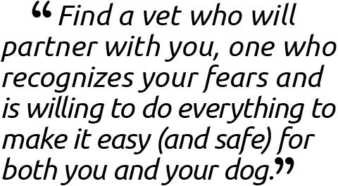 Find a vet who will partner with you, one who recognizes your fears and is willing to do everything to make it easy (and safe) for both you and your dog.