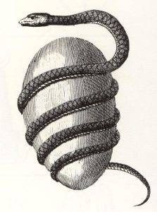orphic egg