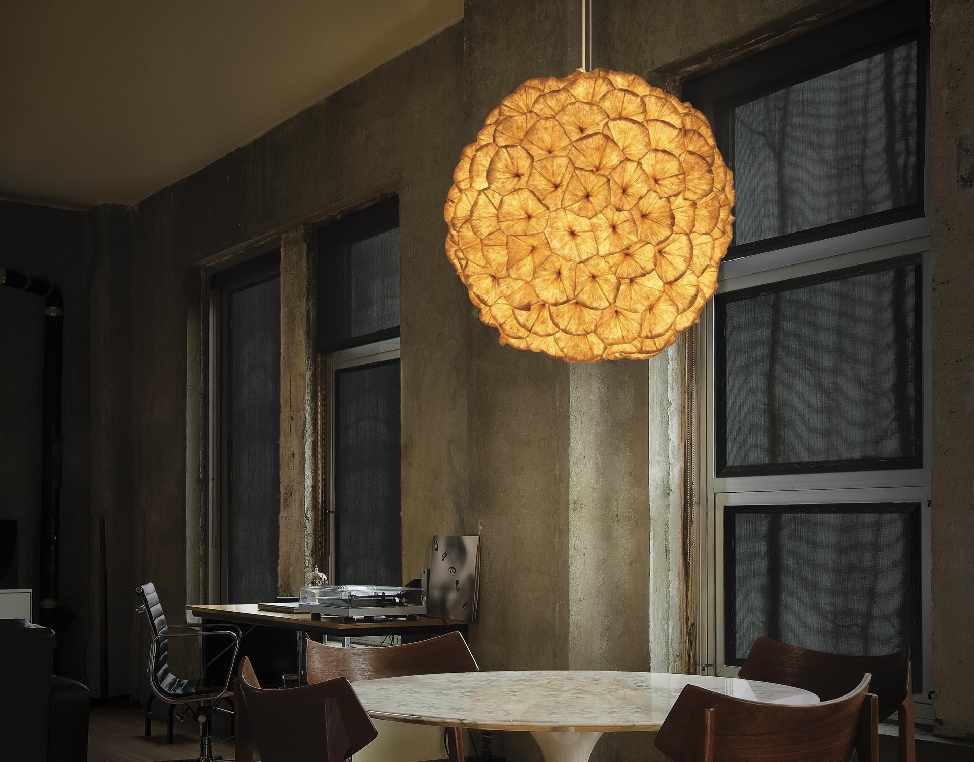 POPPY Hanging Lamps