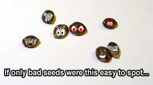 Uh oh...these are definitely some bad seeds...