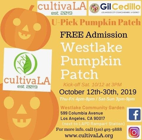 Westlake Pumpkin Patch Flyer ENGLISH
