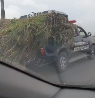 Video: Nigerian Police patrol vehicle captured on camera being used to transport grass