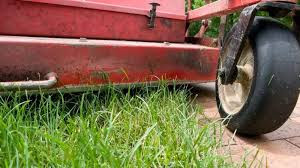 Image result for mowing the lawn