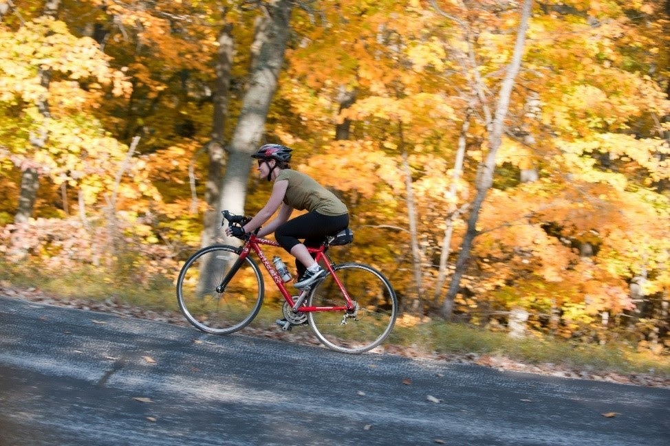 A bicyclist in side profile bikes up hill. Fall foliage covers the trees behind the cyclist.