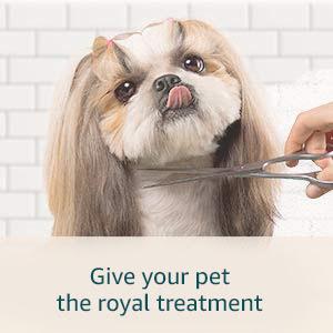 Pet grooming UAE