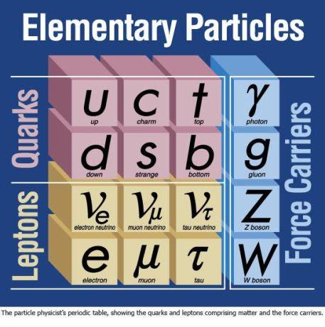 Funamental particles