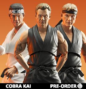 Cobra Kai Select Series 1