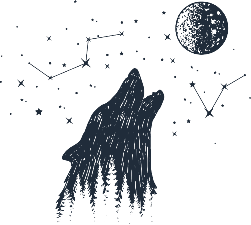 A wolf howling at the moon with stars and constellations