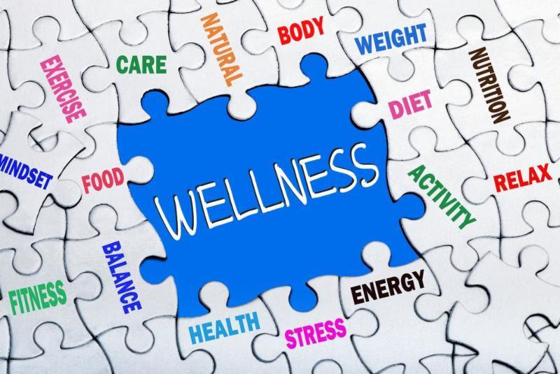 wellness platform image