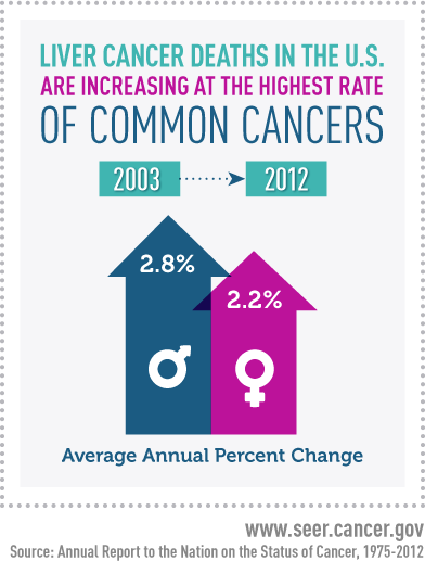 Inforgraphic that says Liver Cancer deaths in the US are increasing at the highest rate of all cancers. Images below describer Average Annual Percent Change. Box that says 2003 over blue arrow that says 2.8%. Box next to it says 2012 with an arrow below it that says 2012.