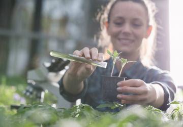 Fondo Verde para el Clima acredita al IICA para implementar proyectos de resiliencia climática de la agricultura