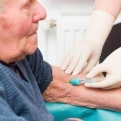 large feb alzheimers blood test