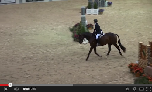 Watch Brian Feigus and Quinn in their winning round!