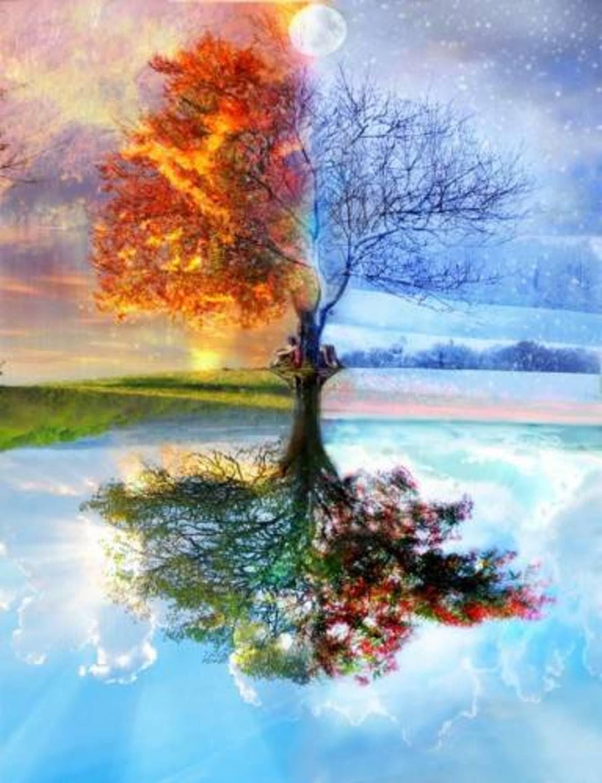 Zen, satori e conoscenza del Sé