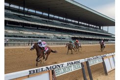 Tiz the Law wins the Belmont Stakes at Belmont Park