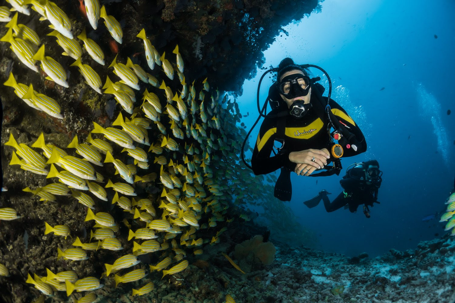 Learning to Scuba Dive is a skill that will last a lifetime.
