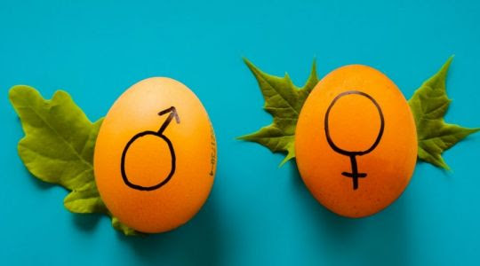 Нашествие гендеров