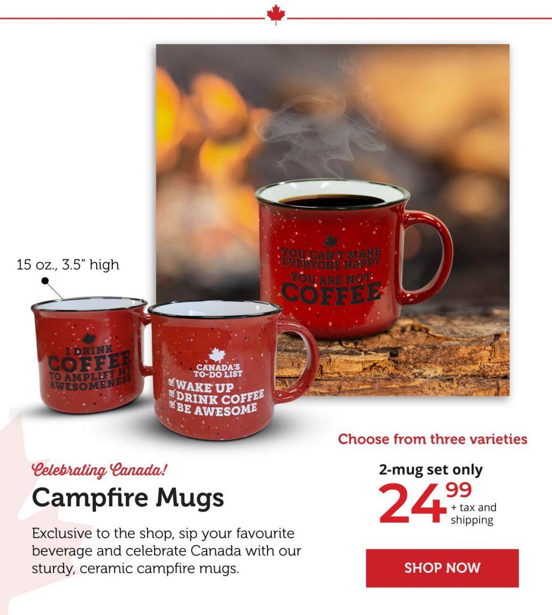 Campfire Mugs - Set of two