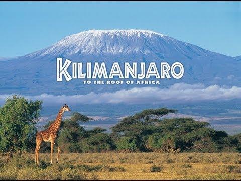 Kết quả hình ảnh cho kilimanjaro national park