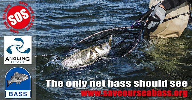 Bass campaign poster