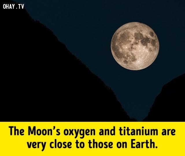 Mặt trăng có thể đã từng là một phần của Trái Đất,trái đất,những điều thú vị trong cuộc sống