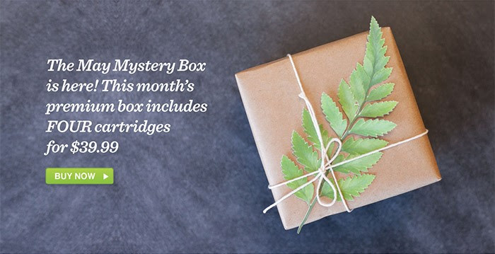 Cricut May Mystery Box only $3...