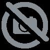 TINTIN: TINTIN EN AMERIQUE (couverture Locomotive) - édition colorisée