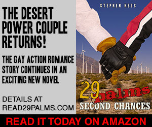 29 Palms: Second Chances by Stephen Hess
