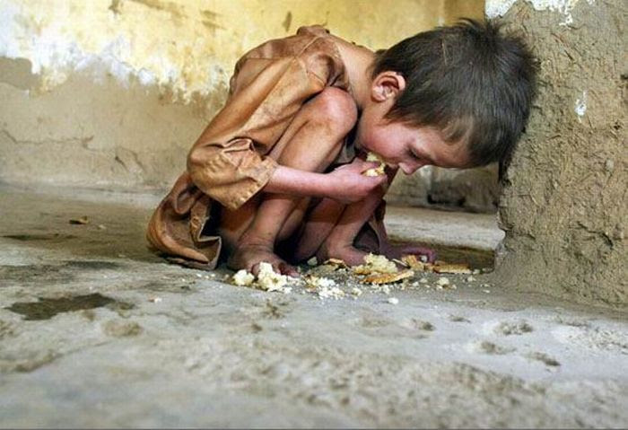 http://www.sott.net/image/s12/242464/full/starvation3.jpg