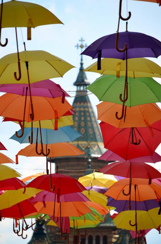 umbrelute