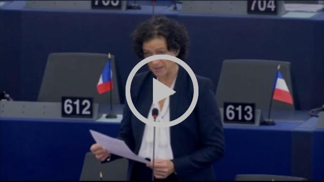 Christelle Lechevalier sur le système carcéral dans les États membres