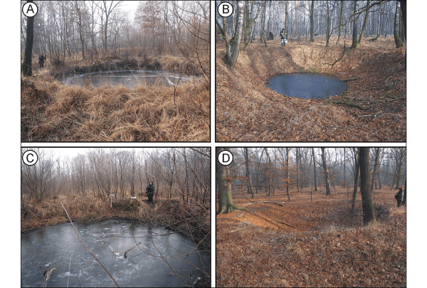 Craters: A) within the marsh; B) in the upper part of terrace; C) in the lower part of terrace; D) on the dune (photographs A, C & D by Jan Maciej Waga, B by Maria Fajer).Cortesía de Cambridge.org