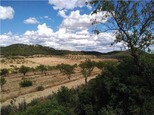 Zona on es durà a terme el projecte d'ampliació del regadiu de Segrià Sud
