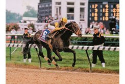 Sea Hero wins the 1993 Kentucky Derby (G1) at Churchill Downs