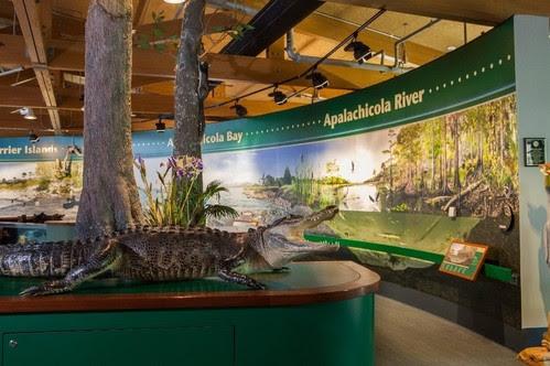ANERR Nature Center