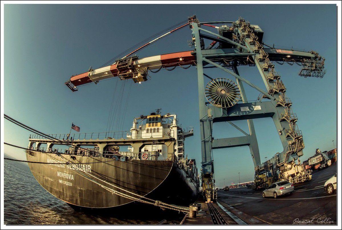 Infos - les Ports, et Infrastuctures maritimes Ob_67339e_northern-debonair-t9119