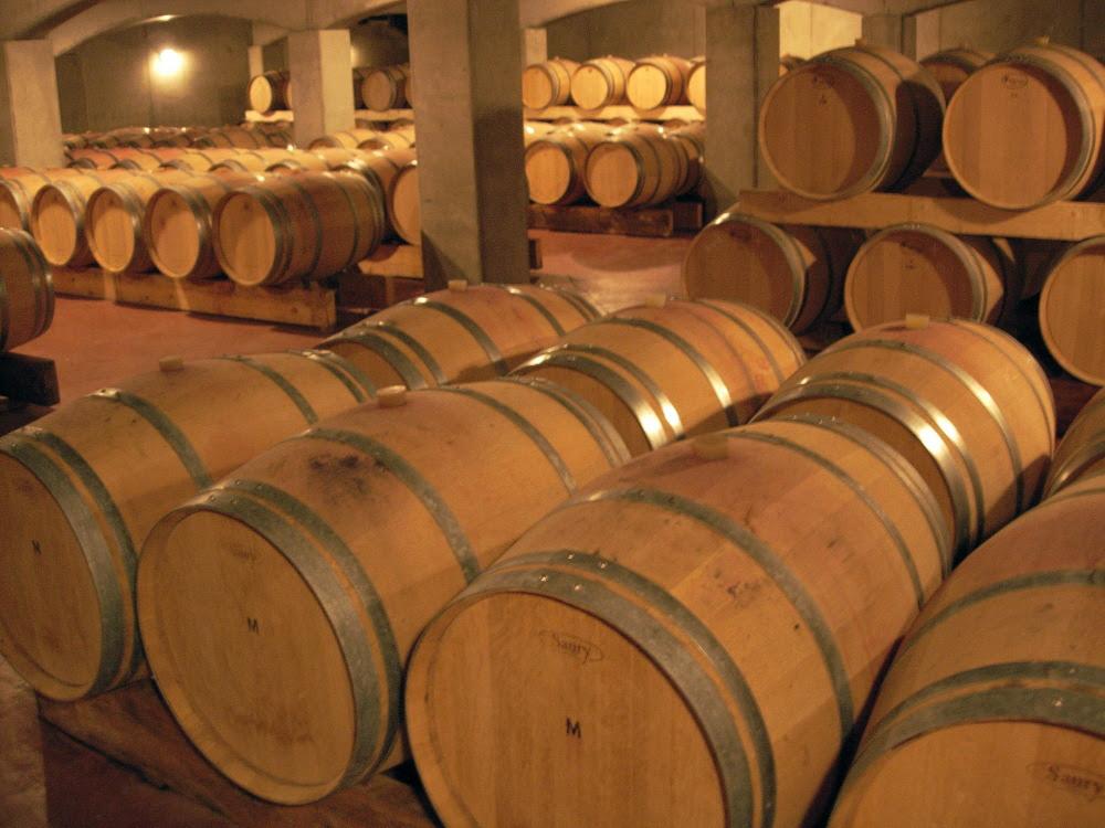 Wine Cellar of producer of Bordeaux Blanc: Château de la Vieille Tour