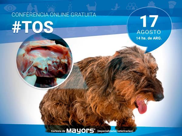 Conferencia para veterinarios sobre Tos