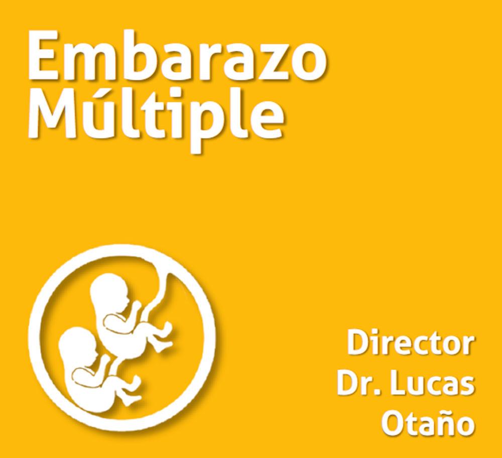 Curso Embarazo Multiple