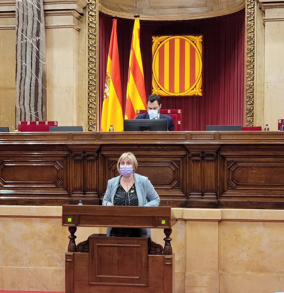 La consellera Vergés, aquesta tarda al Parlament.