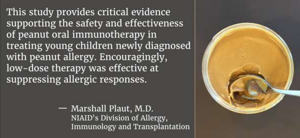 This study provides critical evidence supporting the safety and effectiveness of peanut oral immunotherapy in treating young children...