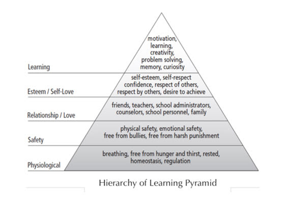 Hierarchy of Learning