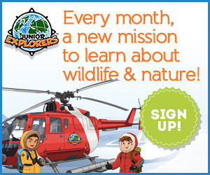 Get a Junior Explorer Kit!