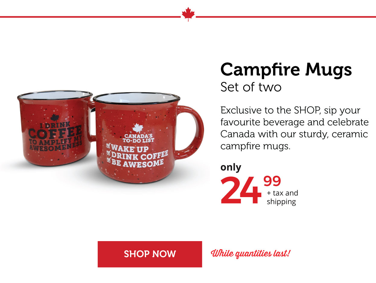 Campfire Mugs - Set of two