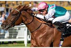 Quadrilateral wins her second start by nine lengths at Newbury