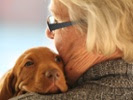 Clinical trials on pet dogs with cancer likely to help people