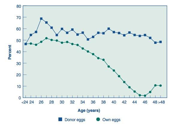Resultado de imagen de donación de ovocitos